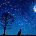 HOVORY S DUŠÍ: Proč člověk, který si uvědomí, že mu zbývá jen omezený čas na tomto světě, tak často obrátí svůj hněv na své nejbližší?
