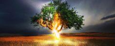 HOVORY SDUŠÍ: Proč nedokážu ovlivnit směr svého života? Je možné získat moc nad svým osudem?