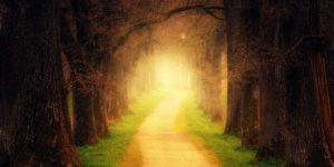 Nástrahy na duchovní cestě 1 – Máte dost odvahy?
